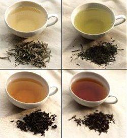 разновидности чая - фото.